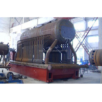 China automatic 10 ton coal fired steam boiler for fertilizer plant