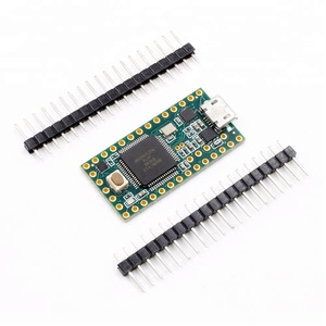 2756 Adafruits Development Boards & Kits - ARM Teensy 3.2 and head