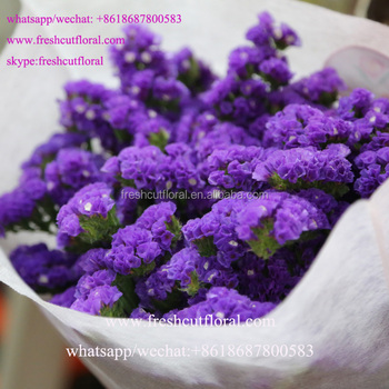 Export High Quality Lavender Statice Flower Flowers Dried Most
