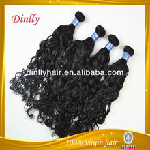 Sample quality indian hair roman curl 100% virgin hair 2013 new product