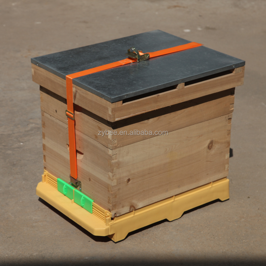 Beehive With Beehive Plastic Bottom And Beehive Belt For ...