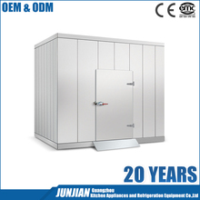 Custom high quality refrigerator chiller walk in cool cooler / freezer