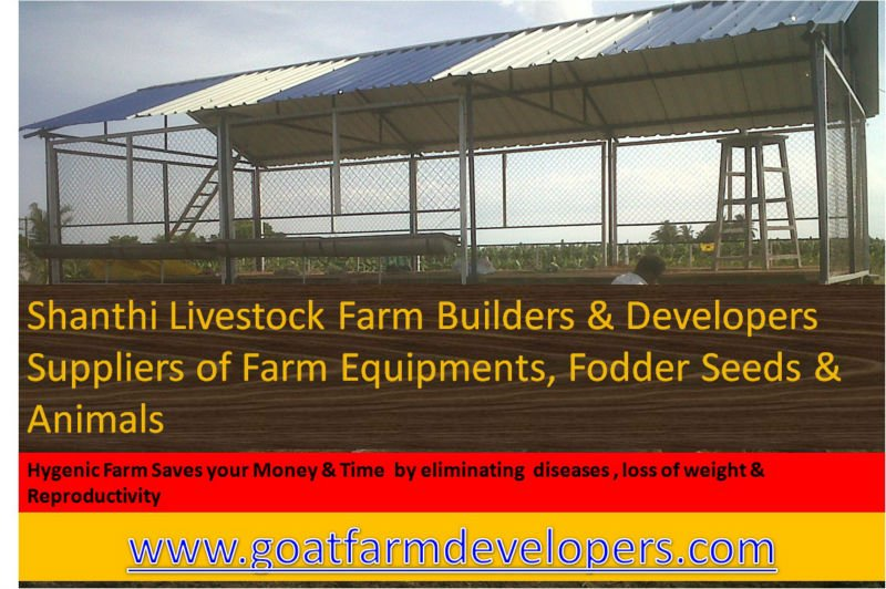 Goat Farm Builders & Developers - Buy Goatfarm Product on Alibaba com