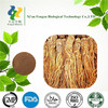Hot sales Improve blood circulation angelica root extract