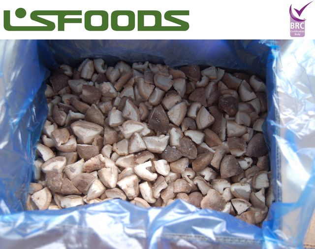 IQF frozen shiitake and baby oyster mushroom available