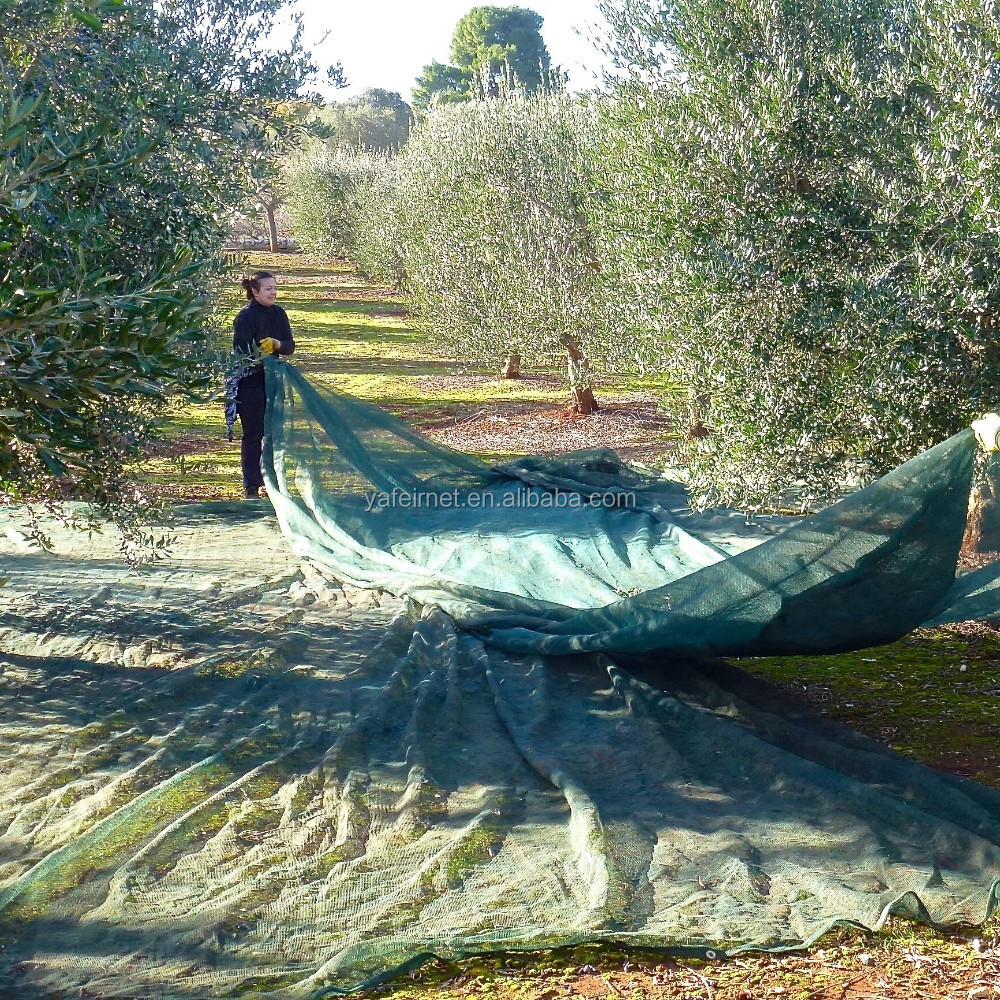 china factory directly exported olive net / olive collection net / olive harvest nets