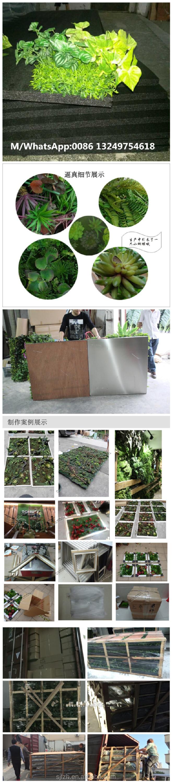 cheaper artificial grass wall decor at office plastic green walls