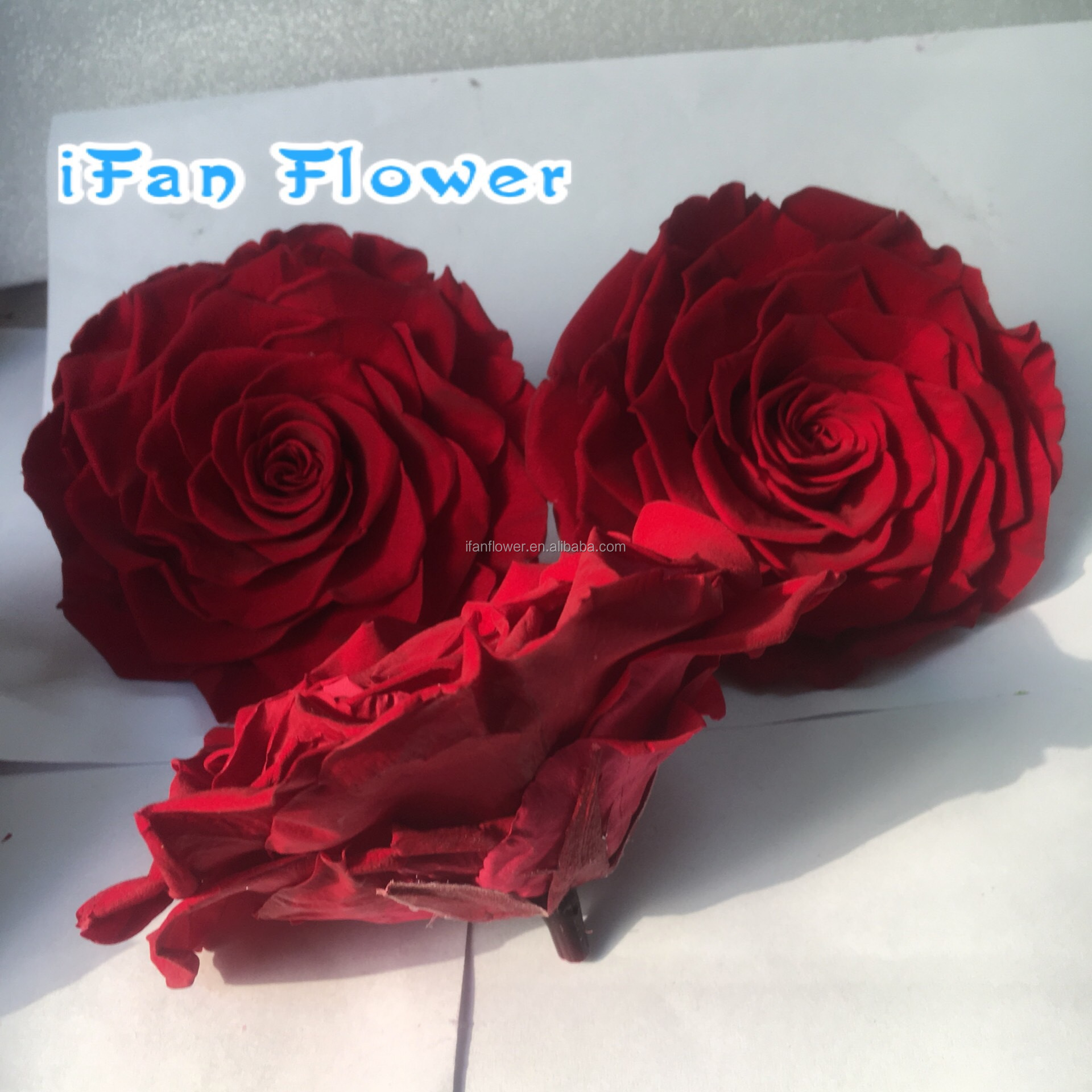 Cheap Price Custom Customized Beautiful Love Gift Eternal Flowers
