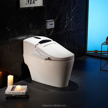 japanese toilet water spray. Clean Vagina Toilet Bidet  Suppliers and Manufacturers at Alibaba com