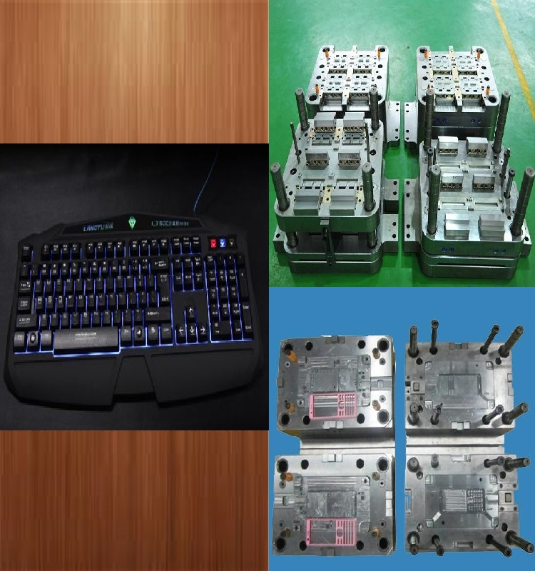 1St studio siberian mouse internet