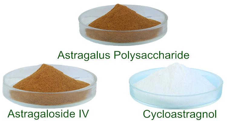 Astragalus Extract Polysacchrides, Astragaloside IV and Cycloastragenol