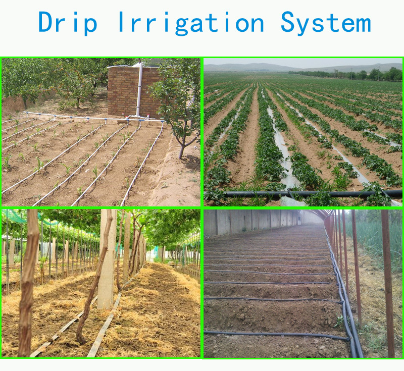 New Design Water Saving Farm Drip Irrigation System Buy