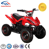 electric mini atv/quad for kids with 36V 12Ah battery 500W 800W