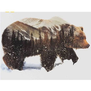Wildlife bear animal painting with numbers framed art oil painting canvas roll, wholesale digital diy kits oil paint by number