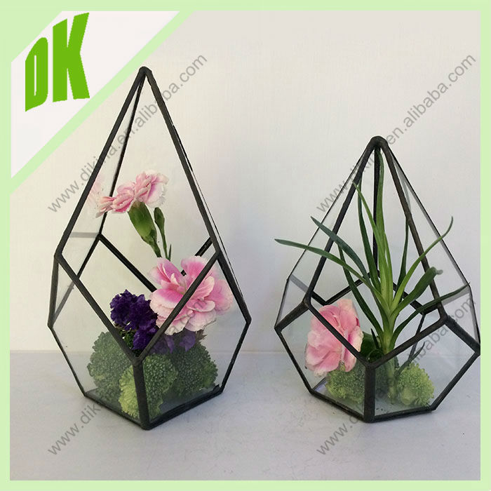 Diy Terrarium Kit In A Jar Glass Terrarium Geometric Terrarium