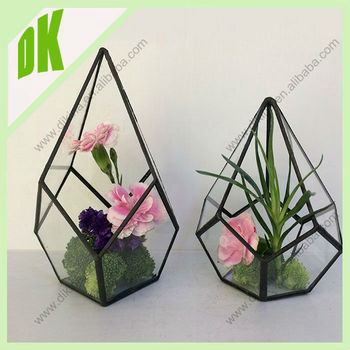 terrarium bricolage kit dans un bocal verre terrarium. Black Bedroom Furniture Sets. Home Design Ideas