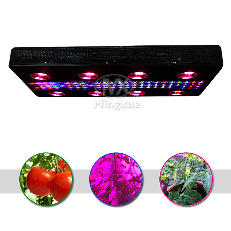 Hydroponics Square Pipe Indoor Growing Alumnium Led Cabinet For Shelf Light 12v