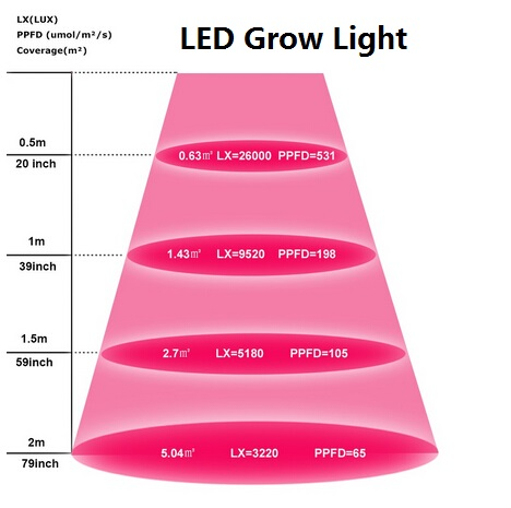 LED grow light UL DLC ETL LED troffer.jpg