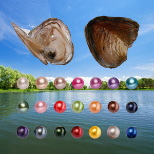 Never fade pearl Wholesale Vacuum-packed rainbow colors nature freshwater round pearl 6-8mm in freshwater oyster shell