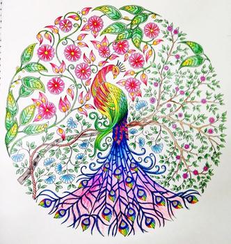 Secret Garden An Inky Treasure Hunt And Coloring Bookjohanna