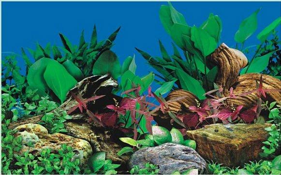 Waterproof Plastic Aquarium Background Picture Poster J67