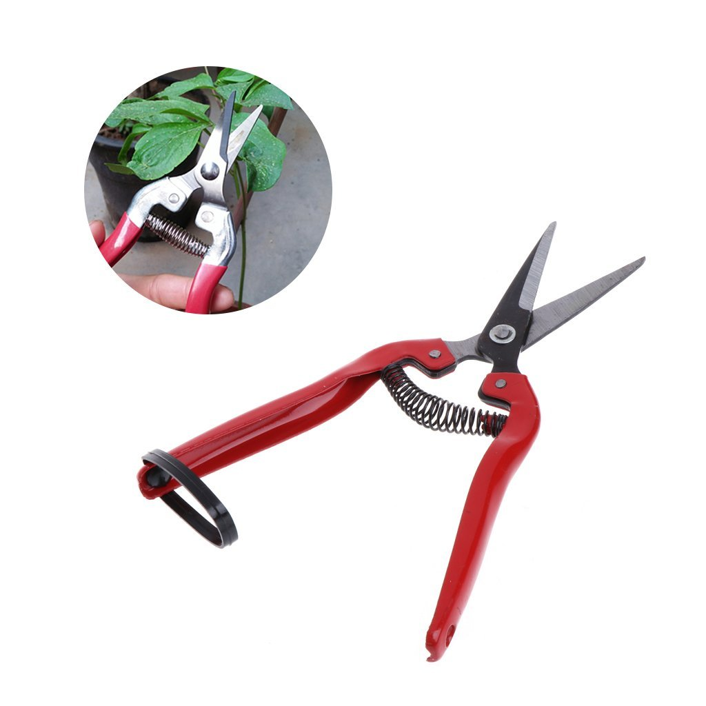 BKID Garden Scissors Plant Pruning Scissors Garden Cutter Pruning Shears Bypass Pruner