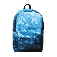 Quanzhou Supply printed laptop bag,laptop carry bag, 17 inch laptop computer bag