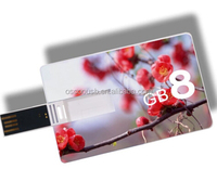 Factory Price Credit Card Shape USB Memory Stick, New Business Gift Credit Card USB Flash, New Customized Design USB Sound Card