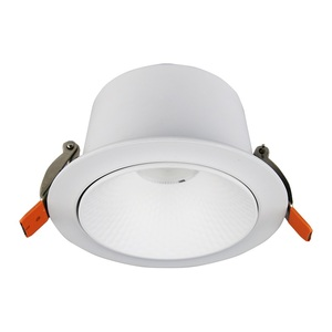Widely Used Ceiling Recessed COB Lamp Spot Light 5W 10W 20W 30 40W LED Spotlight