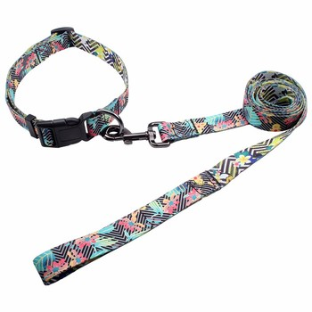 China wholesale customized fashion paper card package dog collar and leash