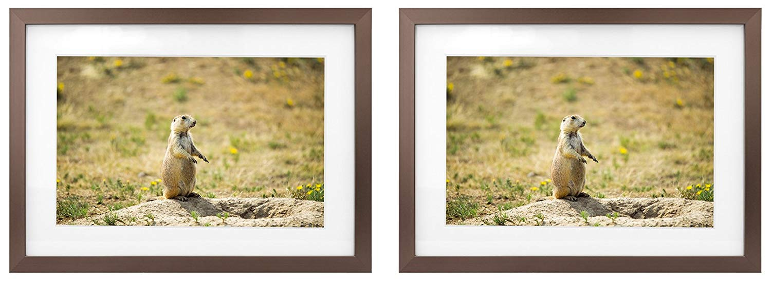 Golden State Art Two 5x7 Picture Frames - Antique-Bronze Aluminum - Fit Photo 4x6 With Ivory Mat or 5x7 without Mat - Metal Frame by Shiny Brushed Style - Real Glass (5x7, Set of 2, Antique-Bronze)
