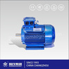 China manufacture good price 3 phase asynchronous motors IP55 220V 415V