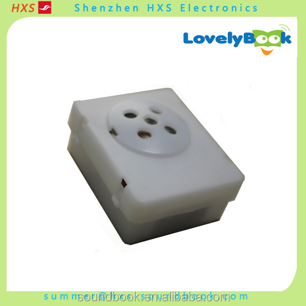 china wholesale voice box