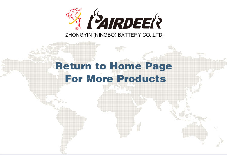 Pairdeer private label cr2032 battery