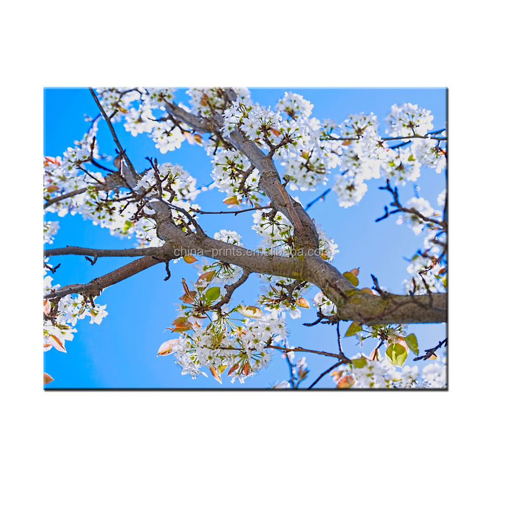 Spring Pear Tree Canvas Home Decor Painting Canvas Stretched Painting Print On Canvas
