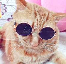 6d0f308e77bfac Anxiu Fashion Koreaanse Ontwerp Huisdier Accessoires Cool Hond Kat Zonnebril