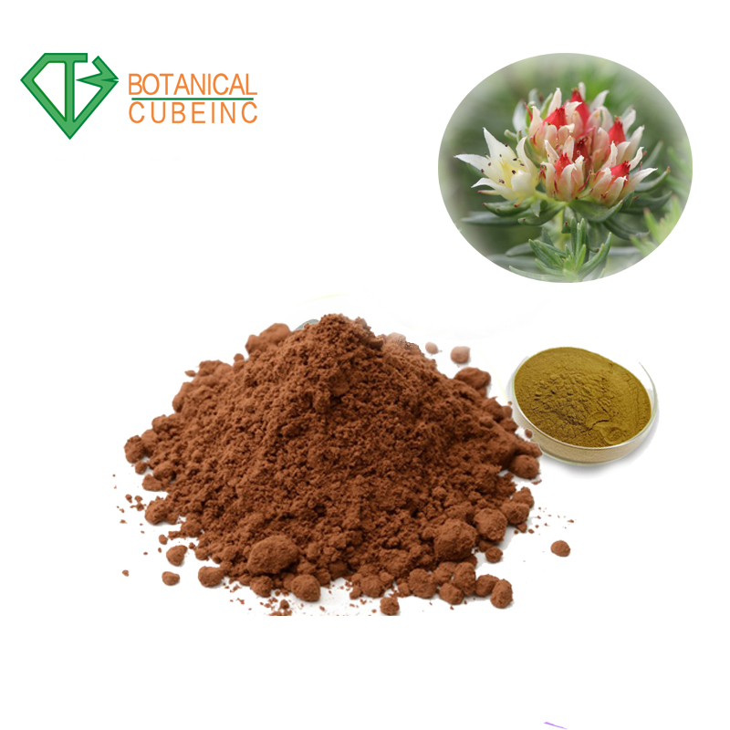 Factory supply 100% pure natural pineapple fruit powder extract  10:1 pineapple flavor powder.