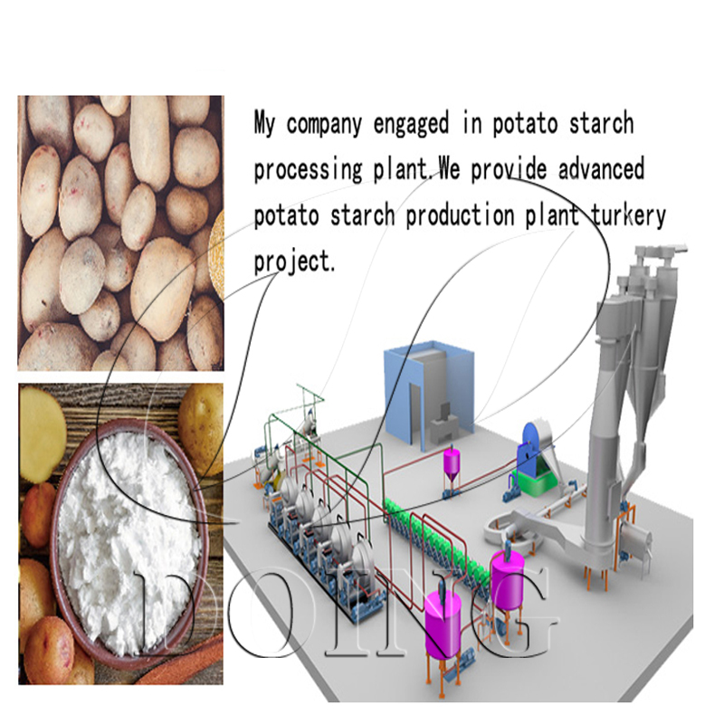Potato starch extraction process one stop service professional team is reponsible for the installation