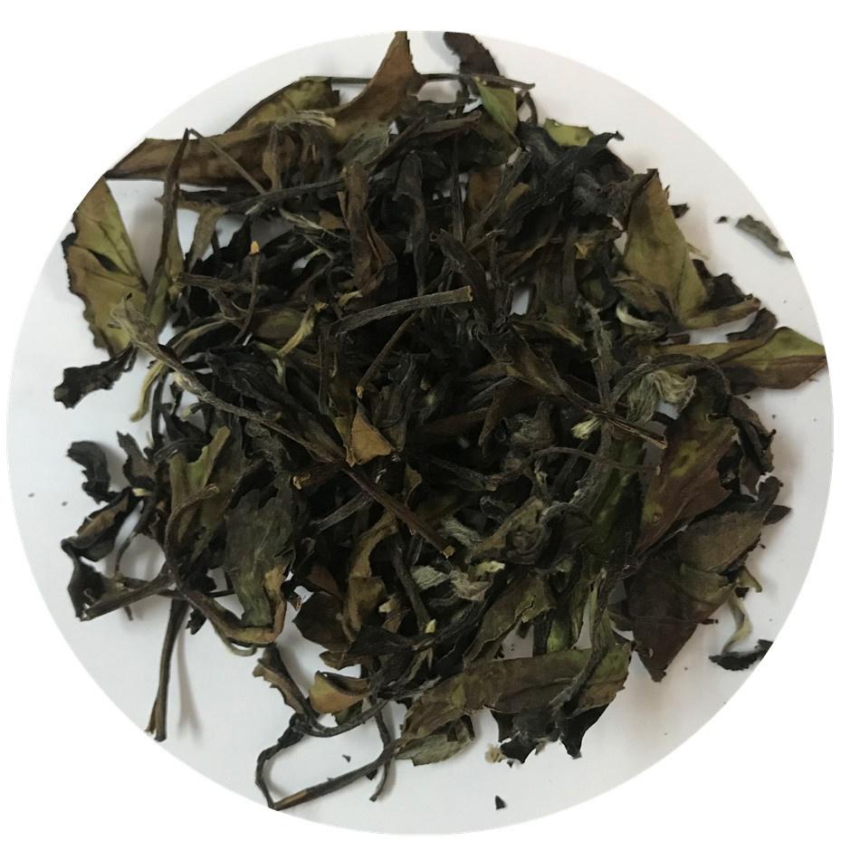 Best White Tea Brands Fuding White Tea Shou Mei - 4uTea | 4uTea.com