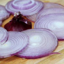 Onion Slicing <span class=keywords><strong>Máy</strong></span> <span class=keywords><strong>Máy</strong></span> <span class=keywords><strong>Cắt</strong></span> <span class=keywords><strong>Máy</strong></span> Slicer