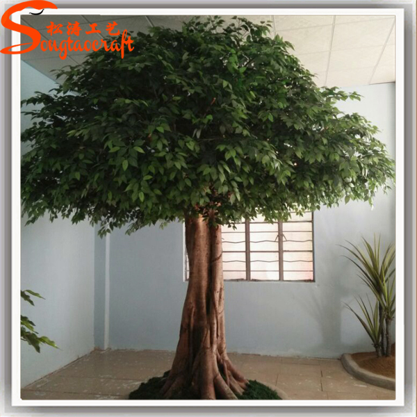 Indoor Evergreen Trees: New Products 2015 China Price Evergreen Large Artificial