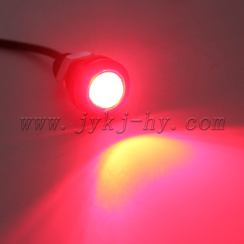 18mm 23mm 3w Car Led Tail Lamp Rgb Eagle Eye Led Lights