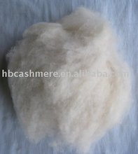 <span class=keywords><strong>100</strong></span>% ruwe witte Dehaired geit wol/cashmere fiber