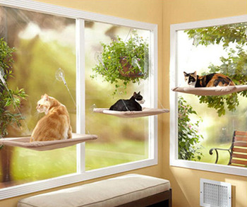 Marvelous Cat Window Seat Mounted Cat Bed With Suckers Buy Cat Window Seat Window Mounted Cat Bed Cat Window Bed Product On Alibaba Com Dailytribune Chair Design For Home Dailytribuneorg