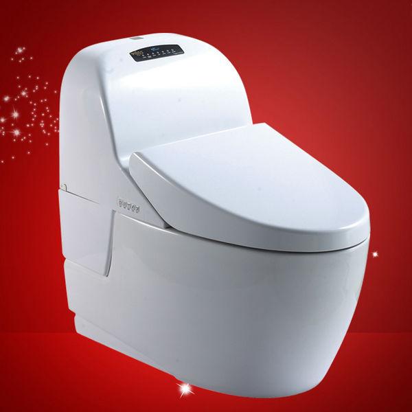Unique Toto Water Closet Frieze   Luxurious Bathtub Ideas And .