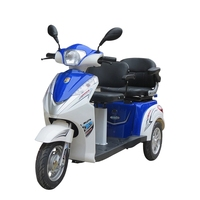 Cheap handicapped motorcycle tricycle high quality 2 seat mobility scooter