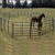 grassland fencing and cattle fence (hot sale)
