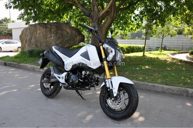 Msx125 Kids Mini Dirt Bike 110cc 125cc Engine Kids Pit Bike Mini