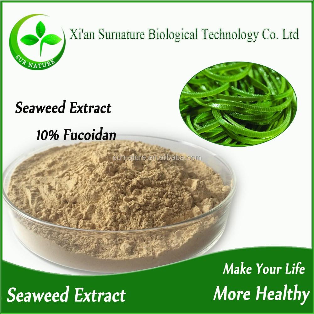 High Quality Seaweed Powder With Best Price,Kelp Extract Fucoidan