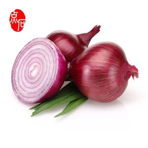Nasik Mesh Bag Onion Importers In Singapore